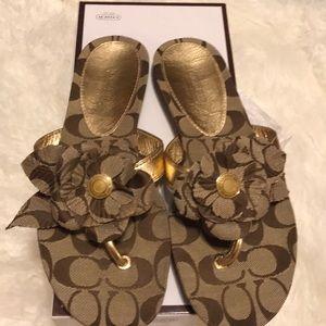 Coach 8.5 khaki gold Patrisha sandals NEW logo